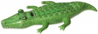 Inflatable Crocodile